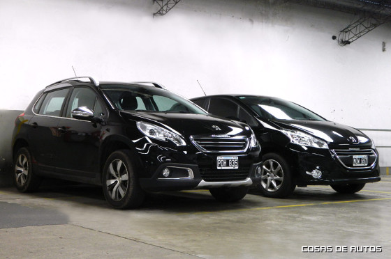 Peugeot 2008 y 208