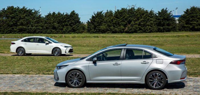 Argentina: se presentó el totalmente nuevo Corolla e incluye versión híbrida